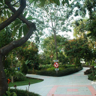 Menggugah Surabaya Kota Ramah Lansia