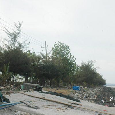 Tsunami dan Cara Sederhana Menangkalnya