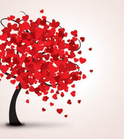 Tujuh Tahap Cinta