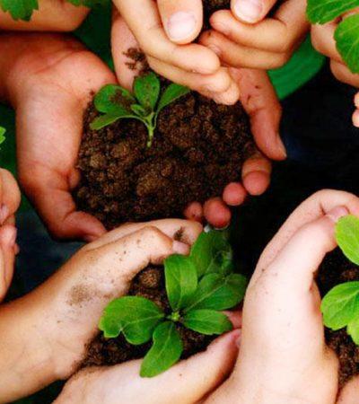 Belajar Memahami Pengelolaan Lingkungan
