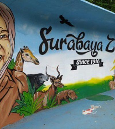 Kebun Binatang Surabaya Siap-siap Buka Lagi Juli 2020